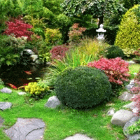 yard landscaping ideas