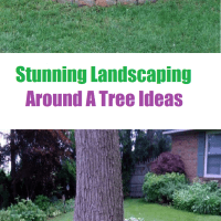 Landscaping Around A Tree Ideas