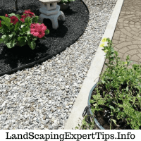 Black mulch landscaping ideas