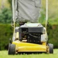 Lawn Maintenance Tips For a Healthy Lawn
